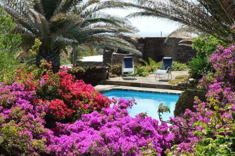 Vista piscina - Dammuso Ettore & Giulia Pantelleria